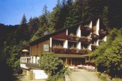 schwarzwald05