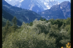 022_Mt_Blanc1