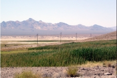 12 IV-Tecopa Hot Springs Rd - 3