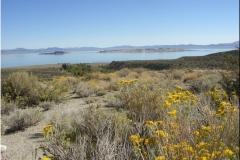 14 I-Hwy 395 Mono Lake - 1