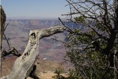 6 Grand Canyon 12