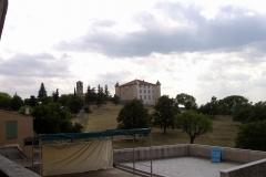 PIC00065