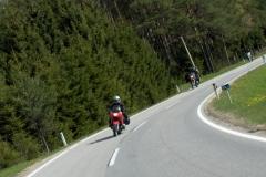 K1024_2.Mai 11-unterwegs nach Waldhausen im Strudengau