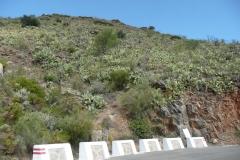 K1024_Spanien 2012 (356)