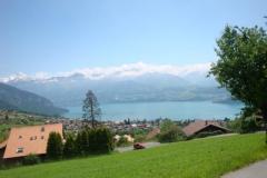 K1024_140-oberhalb Sigriswil am Thuner See