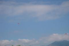 K1024_176-Fallschirmspringer über Beckenried