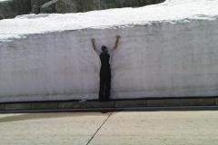 K1024_330-wieder ein Schneefreeclimber